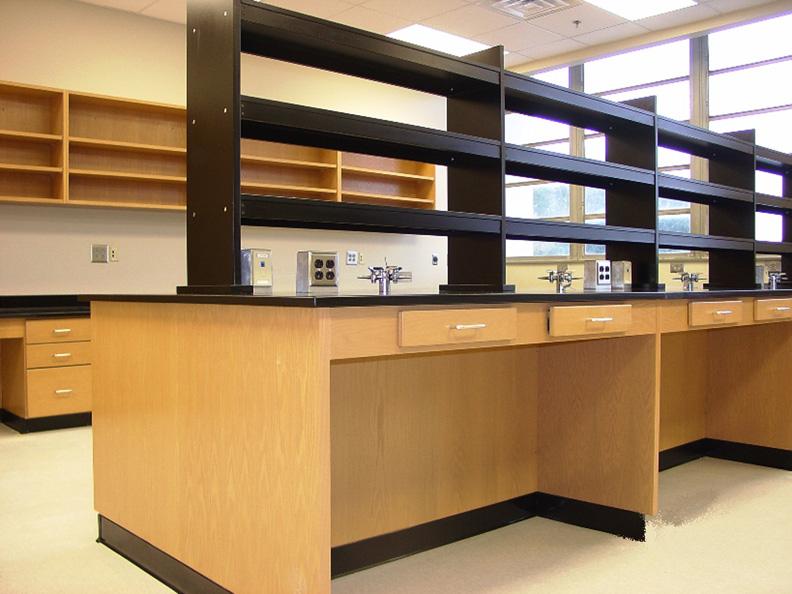 Wooden Laboratory Cabinet Casework